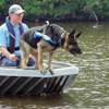 Water search with dogs